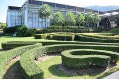 folkträdgård och himmelmoln och byggnad Royaltyfria Bilder