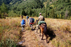 Folkvandring i berg Arkivfoton