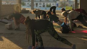 Folkyogis gör yoga med lagledaren i övergiven byggnad i sommar på soluppgång, den sunda livsstilen, rörelsebegrepp stock video