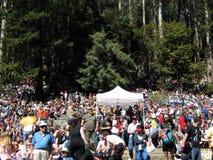 Folla al concerto esterno che gode dell'esposizione Immagine Stock Libera da Diritti
