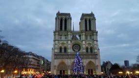 Folla davanti alla cattedrale di Notre-Dame immagine stock libera da diritti