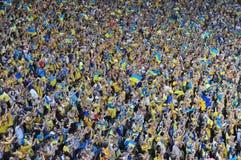 Folla dei fan Immagini Stock