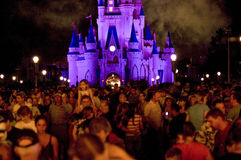 Folla del castello del Disney alla notte Immagine Stock Libera da Diritti