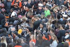 Folla 6 di calcio Immagini Stock Libere da Diritti