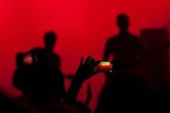 Folla di concerto Fotografia Stock