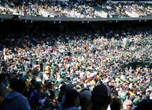 Folla di sport Immagine Stock