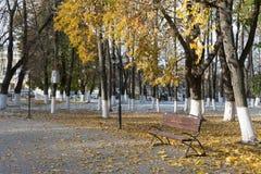 Follaje brillante del otoño banco Vladimir, Rusia Foto de archivo libre de regalías