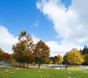 Follaje colorido del otoño cerca del camino de la montaña Imagenes de archivo
