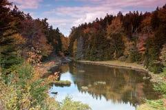 Follaje de caída en Maine, bosque y un lago Foto de archivo