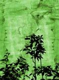Follaje de Grunge ilustración del vector