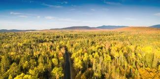 Follaje de Nueva Inglaterra en temporada de otoño Silueta del hombre de negocios Cowering imágenes de archivo libres de regalías