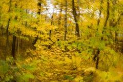 Follaje de otoño con una torsión Fotografía de archivo
