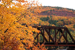 Follaje de otoño de Vermont Imagenes de archivo