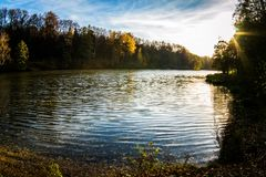 Follaje de otoño dramático de arces rojos y del amarillo Fotos de archivo