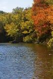 Follaje de otoño dramático a lo largo de la orilla de Russell Pond, New Hampshire Imagen de archivo