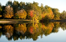 Follaje de otoño en el lago Shaftsbury en Vermont Fotos de archivo