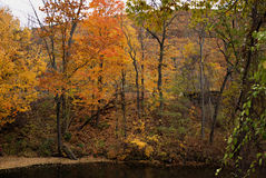 Follaje de otoño II de Vermont Fotos de archivo libres de regalías