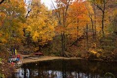 Follaje de otoño III de Vermont Imagenes de archivo