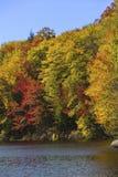 Follaje de otoño llamativo en la orilla de Russell Pond, New Hampshire Imagen de archivo libre de regalías