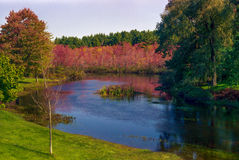 Follaje de otoño Nueva Inglaterra Fotos de archivo