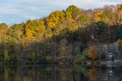 Follaje de otoño de oro en la puesta del sol Imagen de archivo libre de regalías