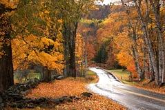 Follaje de otoño VII de Vermont Fotos de archivo