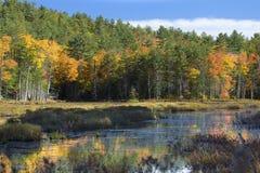 Follaje de otoño y reflexiones en Plymouth, New Hampshire Imágenes de archivo libres de regalías