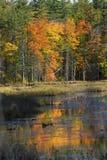 Follaje de otoño y reflexiones en Plymouth, New Hampshire Fotografía de archivo