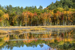 Follaje de otoño y reflexiones en Plymouth, New Hampshire Fotografía de archivo libre de regalías