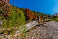 Follaje de otoño en Guadalupe State Park, Tejas Fotos de archivo