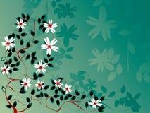 Follaje del manzano Imagen de archivo