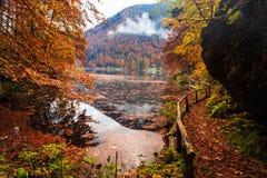 Follaje del otoño en el lago alpino Imágenes de archivo libres de regalías