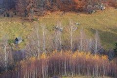 Follaje del otoño en las montañas Imágenes de archivo libres de regalías