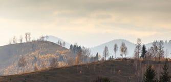 Follaje del otoño en las montañas Fotos de archivo