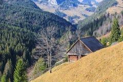 Follaje del otoño en las montañas Imagenes de archivo