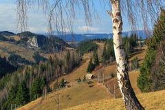 Follaje del otoño en las montañas Fotografía de archivo libre de regalías