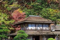 Follaje en el jardín de Sankeien, Yokohama, Kanagawa, Japón del otoño Imágenes de archivo libres de regalías