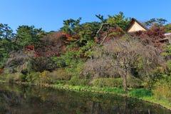 Follaje en el jardín de Sankeien, Yokohama, Kanagawa, Japón del otoño Imagen de archivo libre de regalías
