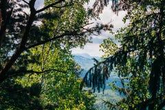 Follaje en las montañas y el fondo del cielo Imágenes de archivo libres de regalías