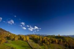 Follaje hermoso del paisaje y del otoño de la montaña Imagen de archivo