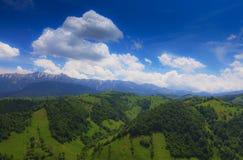 Follaje hermoso del resorte y un bosque de la montaña Fotografía de archivo libre de regalías