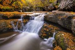 Follaje y cascada hermosos del otoño fotografía de archivo libre de regalías