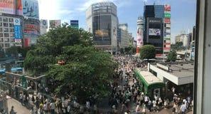 Folle di Shibuya immagini stock libere da diritti