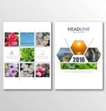 Folletos del negocio, fondos de la falta de definición con los elementos de Infographic libre illustration