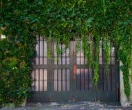 Folliage en puerta del garaje Fotografía de archivo libre de regalías