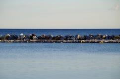 Follonica, pescaia de della de castiglione, Italie 1 Image libre de droits