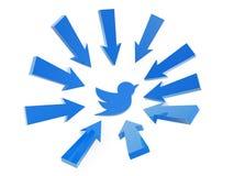 Follow arrow. Point to blue bird on white background Royalty Free Stock Photography