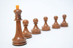 Follow the leader Royalty Free Stock Image