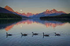 Follow the Leader. We spent an evening as a family this summer at Maligne Lake. It was about family time, but it coinsided with the July Supermoon.  The moon Royalty Free Stock Photos