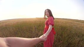 Follow-me hübsches Porträt Brunettemädchen geht mit einem Mann durch die Hand auf Naturfeld Romanceliebe Zeitlupevideo stock footage